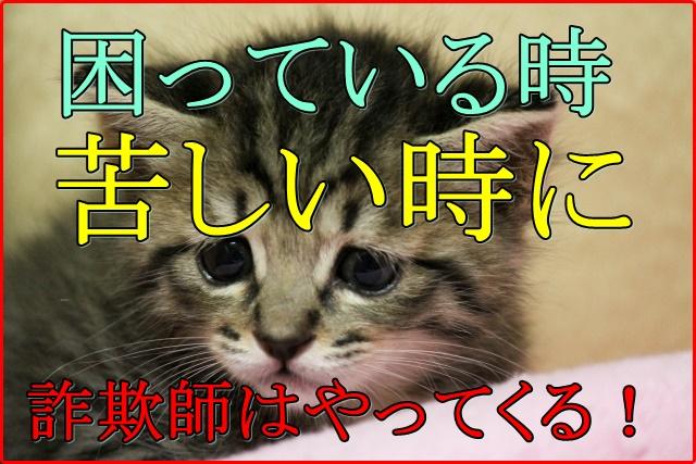 千葉県の台風被害から学ぶ!被災地での詐欺被害の手口や事例と対策!